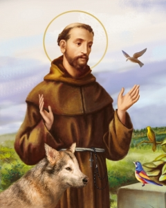 Diamond Mosaic - DIY - st. Francis of Assisi with wolf